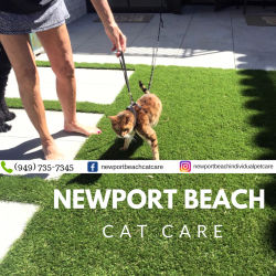 Newport Beach Cat Care
